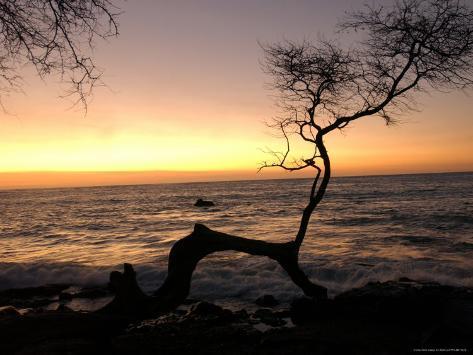 Big Island of Hawaii - Sunset from Beach Photographic Print