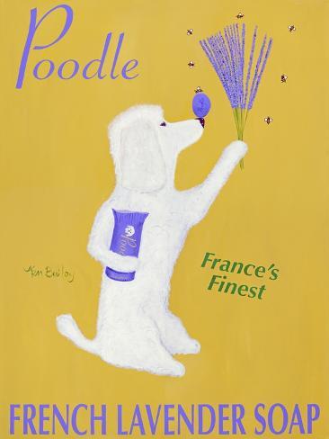 New Poodle Lavender Premium Giclee Print