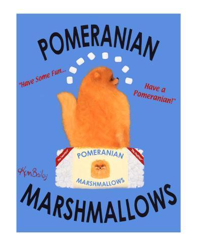 Pomeranian Marshmallows Collectable Print