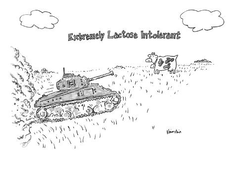 A cow in a pasture watches as a tank approaches.
