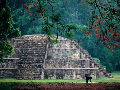 Royal Tomb, Maya, Copan, Honduras Photographic Print