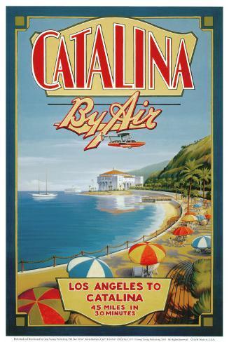 Catalina by Air Art Print