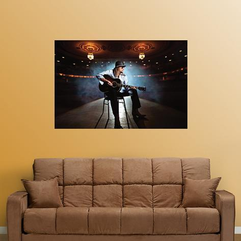Kid Rock On Stage Mural Wall Decal
