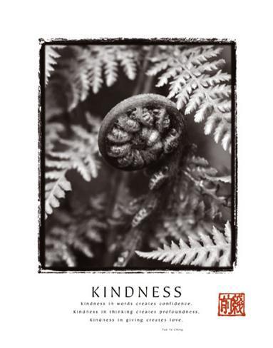 Kindness: Fiddlehead Art Print