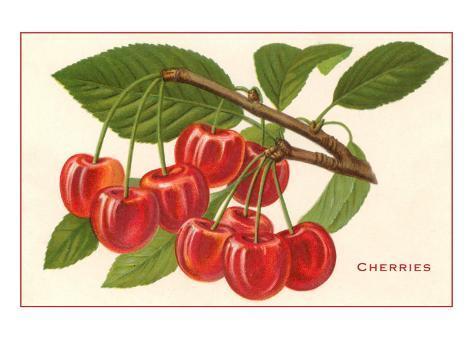Kirsikat Taidevedos