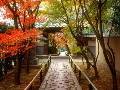 Koetsuji Temple in Autumn Photographic Print