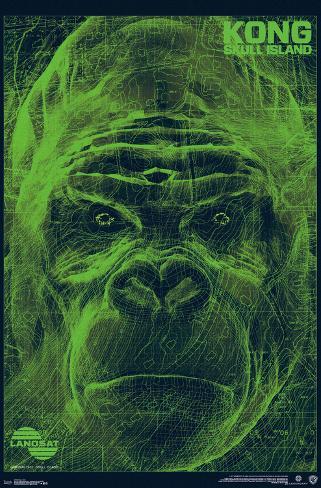 Kong: Skull Island- LANDSAT Scan ポスター