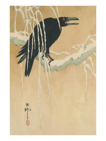 Blackbird in Snow Art Print