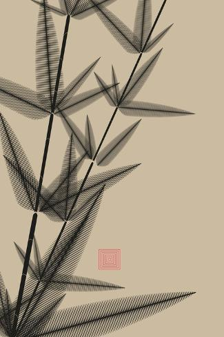 Ink Style Bamboo Illustration in Black and Ivory Stampa artistica