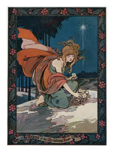 Lady Picking Christmas Roses Lámina giclée