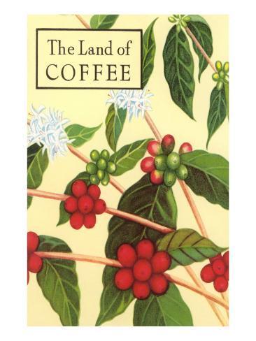 Land of Coffee, Beans Art Print