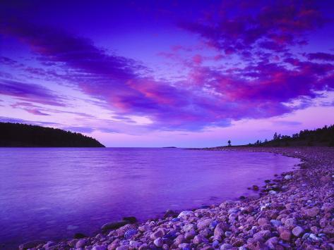 Landscape in Violet Tones, Coast Hoga, Sweden Photographic Print