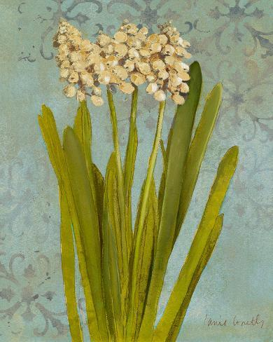 Hyacinth on Teal II Art Print