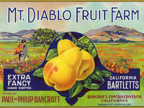 Bancroft, California, Mt. Diablo Fruit Farm Brand Pear Label Art Print