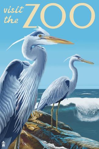 Blue Heron - Visit the Zoo Art Print