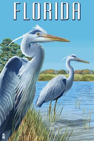Blue Herons in Grass - Florida Art Print