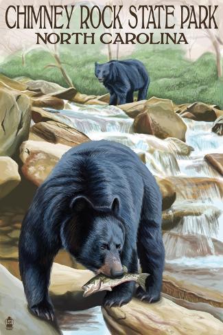Chimney Rock State Park, NC - Bear Fishing in Stream Art Print