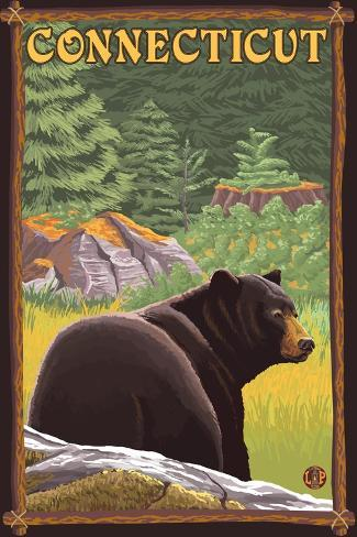 Connecticut - Black Bear in Forest Art Print