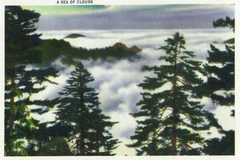 Great Smoky Mts. Nat'l Park, Tn - View of a Misty Clouds Amongst the Trees, c.1946 Art Print
