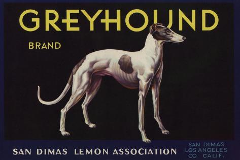 Greyhound Brand - San Dimas, California - Citrus Crate Label Art Print