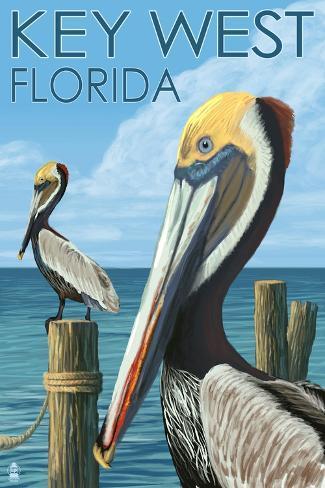 Key West, Florida - Brown Pelican Art Print