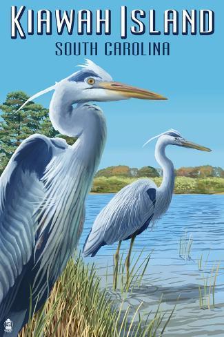 Kiawah Island, South Carolina - Blue Herons Art Print