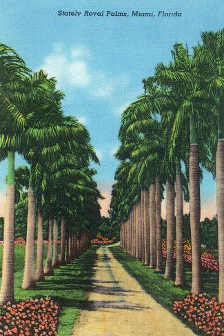 Miami, Florida - View of Royal Palms Art Print