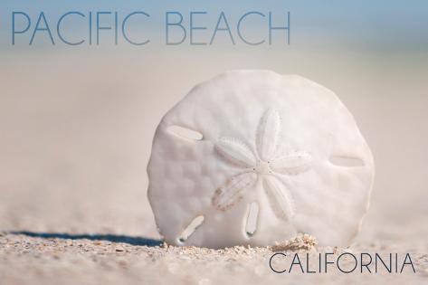 Pacific Beach, California - Sand Dollar on Beach Art Print
