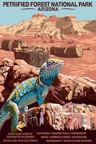 Petrified Forest National Park - Arizona Art Print