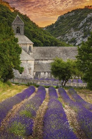 Provence, France - Lavender Fields Premium Giclee Print