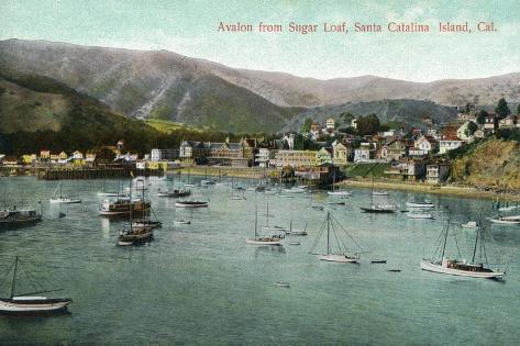 Santa Catalina Island, California - View of Avalon Bay from Sugar Loaf Art Print