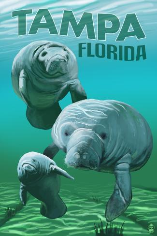 Tampa, Florida - Manatees Lámina