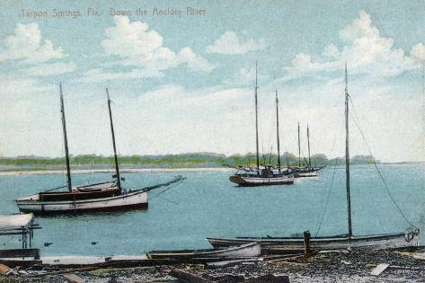 Tarpon Springs, Florida - Anclote River Scene Art Print