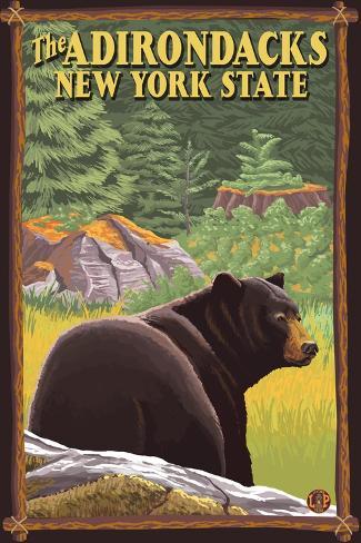 The Adirondacks, New York State - Black Bear in Forest Art Print