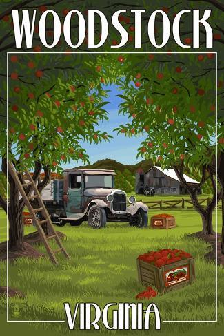 Woodstock, Virginia - Apple Harvest Art Print