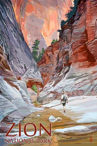Zion National Park - Slot Canyon Art Print