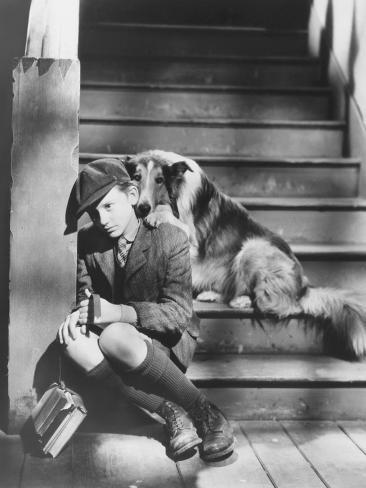 Lassie Come Home, Roddy Mcdowall, 1943 Photo