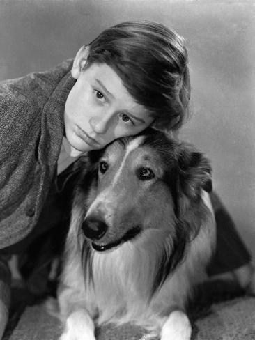 Lassie Come Home, Roddy McDowall, Lassie, 1943 Photo