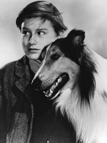 Lassie Come Home Fotografia