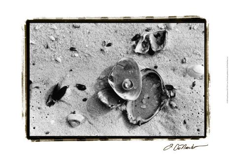 Sand Treasures III Art Print