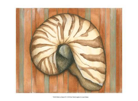Shell on Stripes IV Framed Art Print