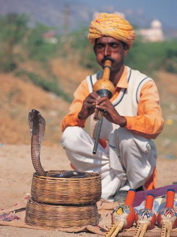 Snake Charmer, India Photographic Print