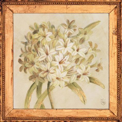 Agapanthus Floret Detail Art Print