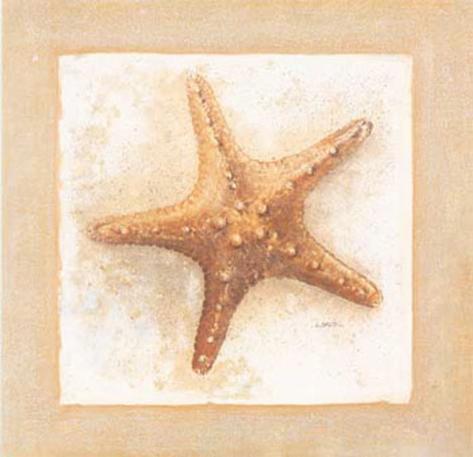 Etoiles de Mer IV Art Print