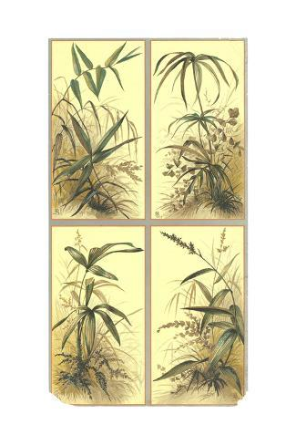 Leafy Stems and Grass Illustrations Art Print
