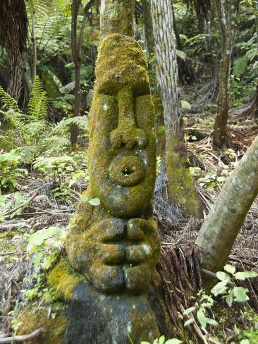 Art at Lochmara Lodge, South Island, New Zealand Photographic Print