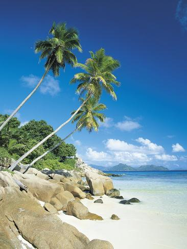 Anse Severe with Praslin Island in Background, La Digue, Seychelles Photographic Print