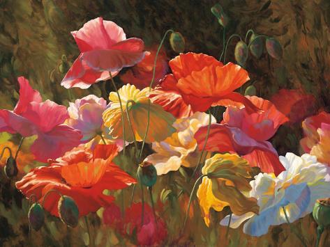 Poppies in Sunshine Art Print