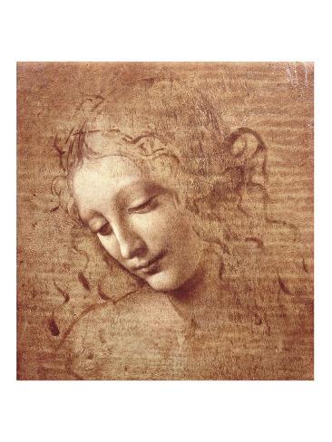 Female Head (La Scapigliata), c.1508 Art Print