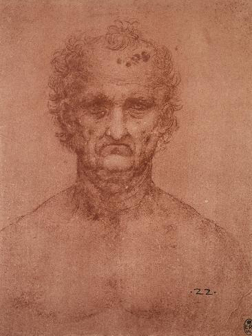 Head of an Old Man, Drawing, Royal Library, Windsor Giclee Print